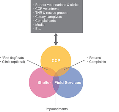 Diagram showing variety of individuals and groups with whom CCP staff typically interact