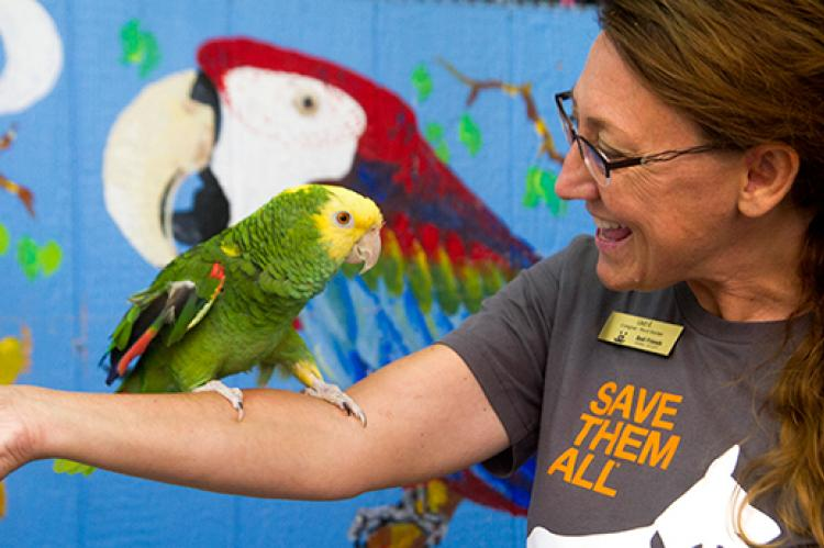 Caregiver holding Little Feather the parrot