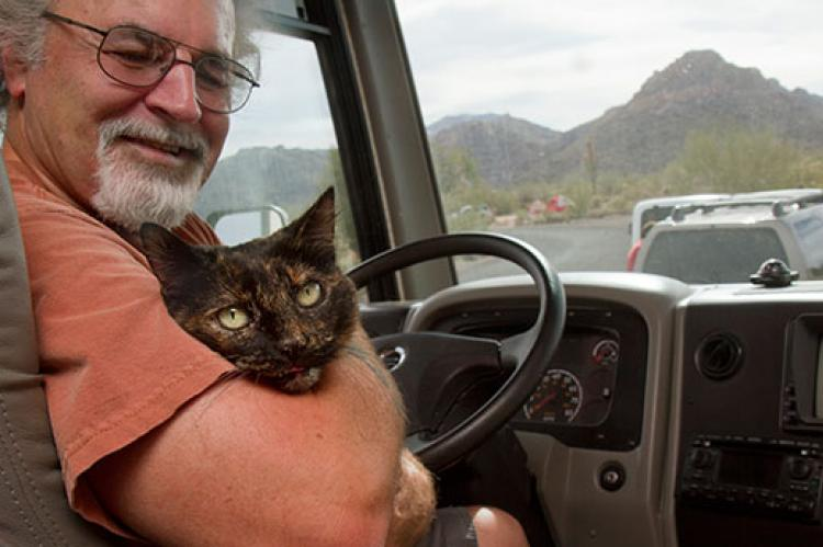 Calico with pet transport driver
