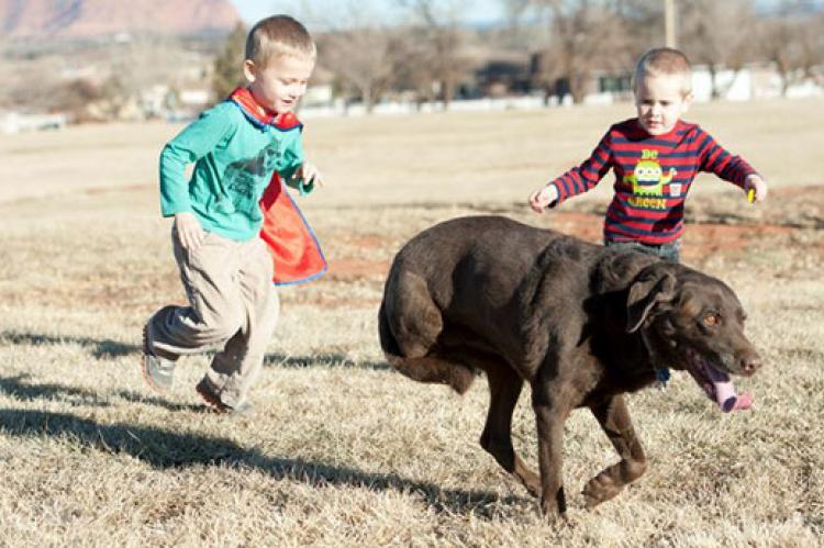 Two boys running with a three-legged dog