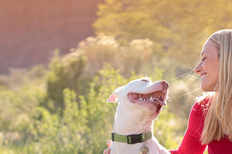White pitbull and his person, a young woman. Get info about the breed on pitbull websites listed in this resource.