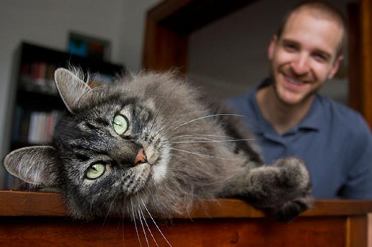Foster Pets Question & Answer Resource | Best Friends ...
