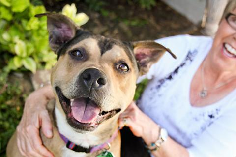 This woman, shown here with her happy, smiling pitbull, was able to find a pitbull-friendly insurance company.