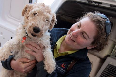 Dog rescued from a puppy mill