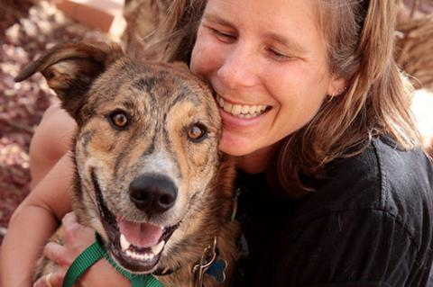 Best Friends does not support pet breeding. Please adopt a pet like this brindle dog from a rescue group or shelter.