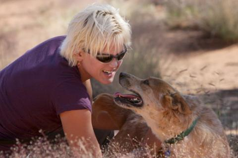 Getting the Behavior You Want From Your Dog