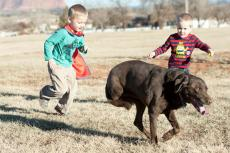 Two boys running with a three-legged dog