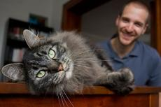 Man with his longhair gray tabby cat foster