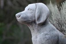 Stone dog statue commemorating life of faithful dog. The loss of a pet is difficult.