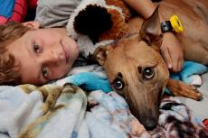 Girl and her dog in bed. There are kids and pets considerations to keep everyone safe and happy.