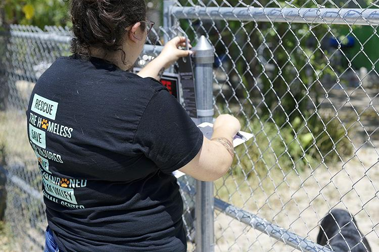 Woman placing a hanging notice on a chain link fence