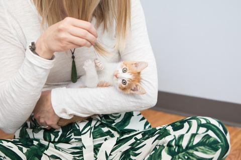 Woman sitting on the floor cradling an orange and white kitten in her arms
